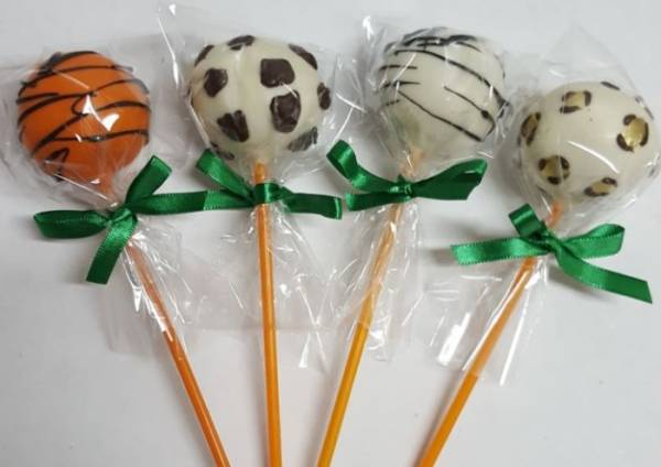 CAKE POP PERSONALIZADO SAFARI